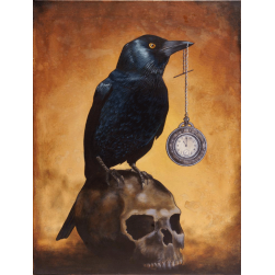 Jackdaw on Skull Ltd Ed Print